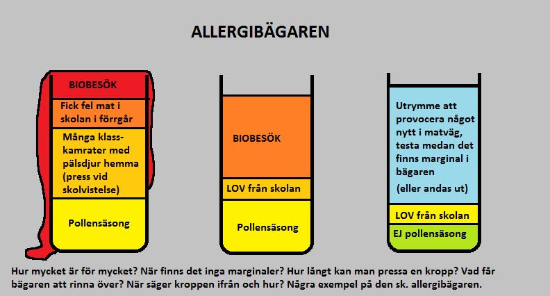 kyckling allergi symtom